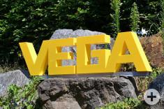 VEGA Eisaktion_c